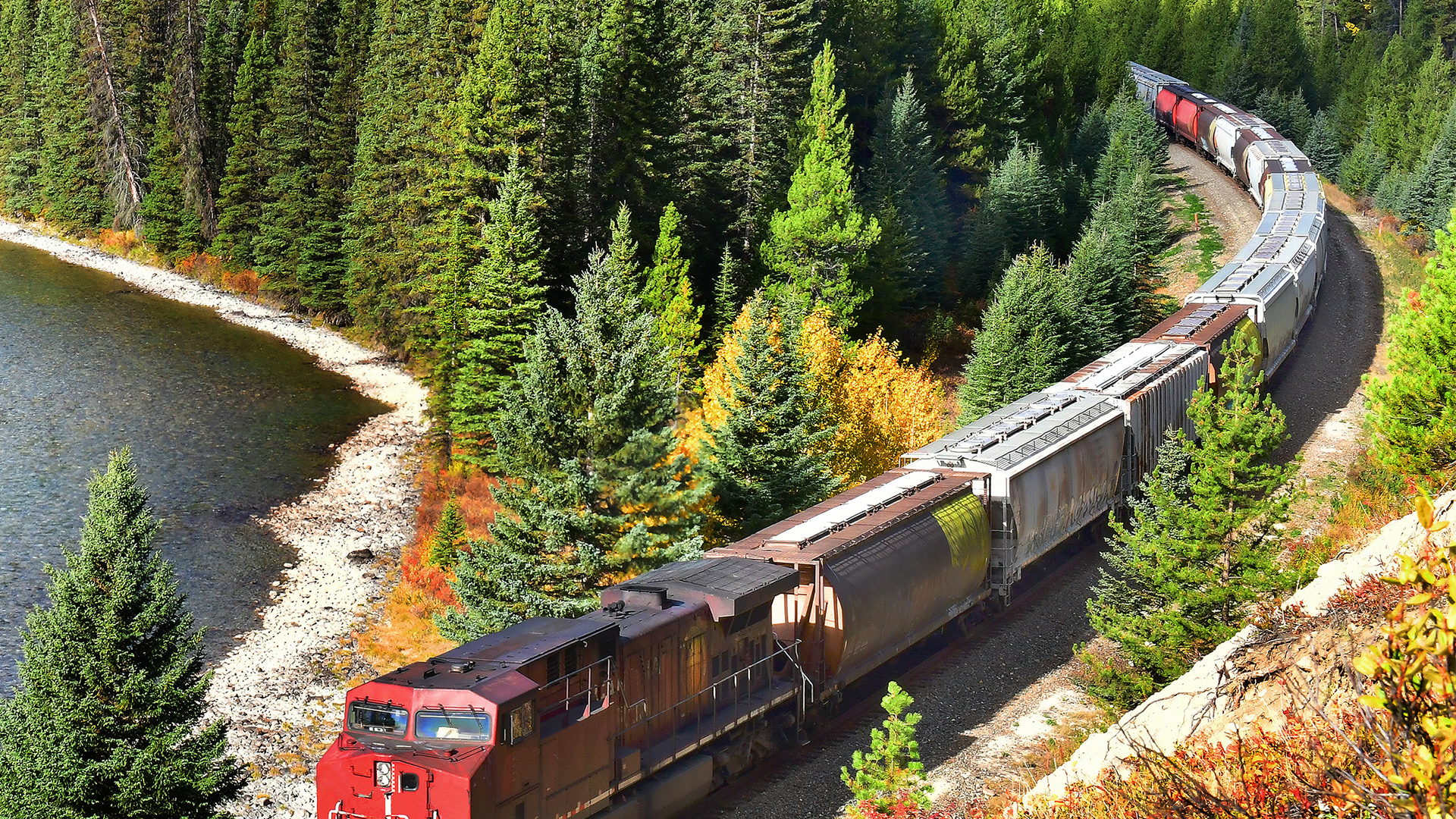 A train passing through the Canadian Rockies in Banff National Park